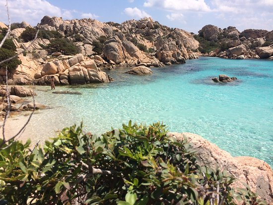 5 isole covid-free
